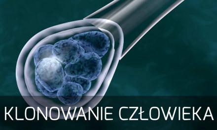 In vitro a defekty wrodzone – prof. Stanisław Cebrat